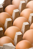 Eggs. A Box Of Eggs On White Backgroud Stock Photo