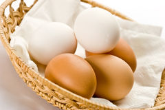 Eggs. Some eggs on the basket over white royalty free stock photo