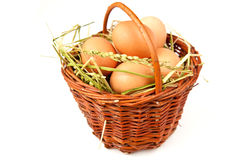 Eggs. Brown eggs in the basket Royalty Free Stock Images