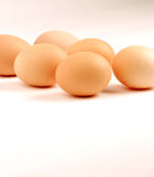 Eggs. Multiple Eggs against a white background Stock Image