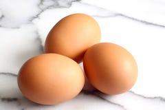 Eggs A immagini stock libere da diritti