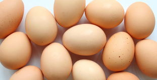 Eggs. Many eggs with white background stock photography