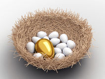 Free Eggs Stock Image - 14656211