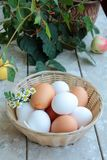 Eggs. Basket of eggs standing on a wooden table Royalty Free Stock Photography