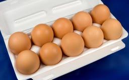 Eggs. Ten eggs in a box Stock Photography