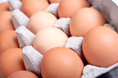 Eggs. In an egg box Royalty Free Stock Photo