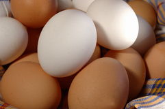 Eggs. White and brown eggs lying in basket royalty free stock photo