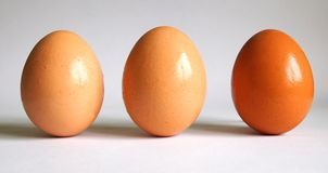 Eggs. Three eggs with bright background Royalty Free Stock Images