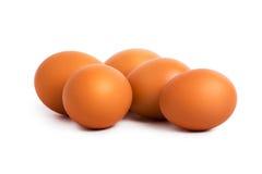 Eggs. Isolated on white background Royalty Free Stock Photo