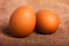 Eggs. Two eggs on a brown background royalty free stock image