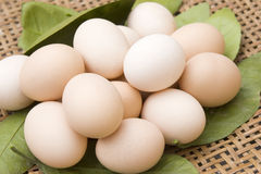 Eggs. Lots of chicken eggs in a container of fresh green leaves ,color of light red whtie Stock Photo
