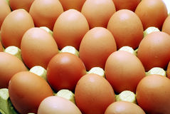 Eggs. Many eggs in a box Stock Photo
