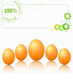 Eggs. On white background - concept natural product Royalty Free Stock Photography