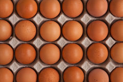 Eggs. Black ground photo of eggs Stock Images