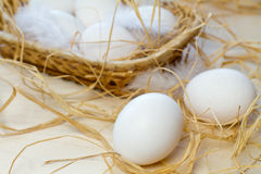 Eggs. Two eggs in straw and eggs in basket Royalty Free Stock Photo