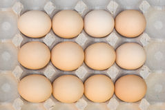 Eggs. Fresh eggs ready to cook Stock Photography