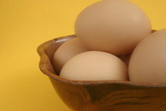 Eggs. Closeup of a speckled brown chicken egg royalty free stock photo