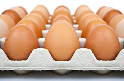 Eggs. A Carton of Eggs on a white background Royalty Free Stock Photo