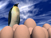 Eggs 27 Stock Images