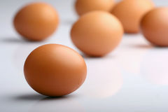 Eggs. On white background Royalty Free Stock Image