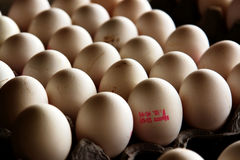 Eggs. For sale on a market in the middle-east Royalty Free Stock Photos