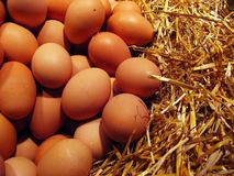 Eggs. Brown eggs at the market into straw Stock Photo