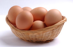 Free Eggs Stock Photo - 3149400