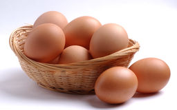 Free Eggs Royalty Free Stock Photo - 3152845