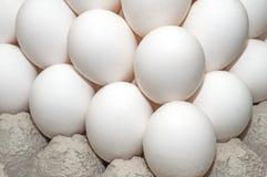Free Eggs Stock Photography - 37547052