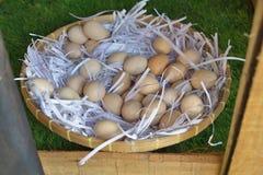 Eggs. Eggs on bamboo basket Stock Image