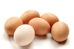 Eggs. Fresh egg  on the white background Royalty Free Stock Images