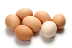 Eggs. Fresh egg  on the white background Royalty Free Stock Photography