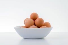 Free Eggs Stock Image - 42037371