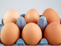 Eggs. Close up of Eggs in their blue box against grey background Royalty Free Stock Photo