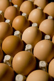 Eggs. On tray ready to be sold at  food market Stock Image