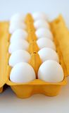 Eggs. In a eggtray stock image