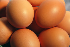 Eggs. A lot of brown chicken eggs Stock Image
