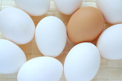 Eggs. A lot of white and brown eggs Royalty Free Stock Images