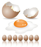 Eggs stock illustration