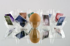 Eggs. With different conceptual approach Royalty Free Stock Photography