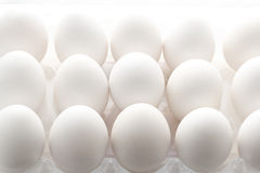 Eggs. White chiken eggs in plastic container with backlighting Stock Images