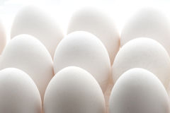 Eggs. White chiken eggs with backlighting Royalty Free Stock Image