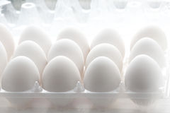 Eggs. White chiken eggs in plastic container with backlighting Royalty Free Stock Image