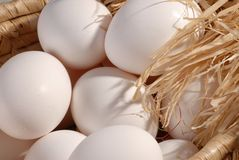 Eggs. In basket Royalty Free Stock Photography