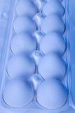 Eggs 8. A dozen fresh eggs still in their carton Stock Images