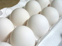 Eggs. In carton royalty free stock photography