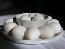 Eggs. Black and white Still life with eggs Stock Images