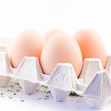 Eggs. In carton Royalty Free Stock Photos