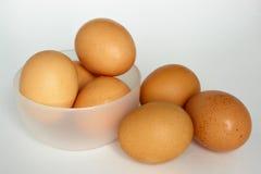 Eggs. Raw eggs Royalty Free Stock Photo