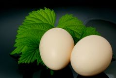 Eggs. Royalty Free Stock Photo
